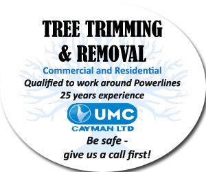 UMC-Cayman-Ltd