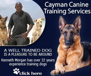 Cayman-Canine-Training-Services