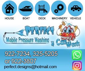 Perfect-Mobile-Pressure-Washing-Car-Wash