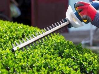 CMA-Gardening-Services